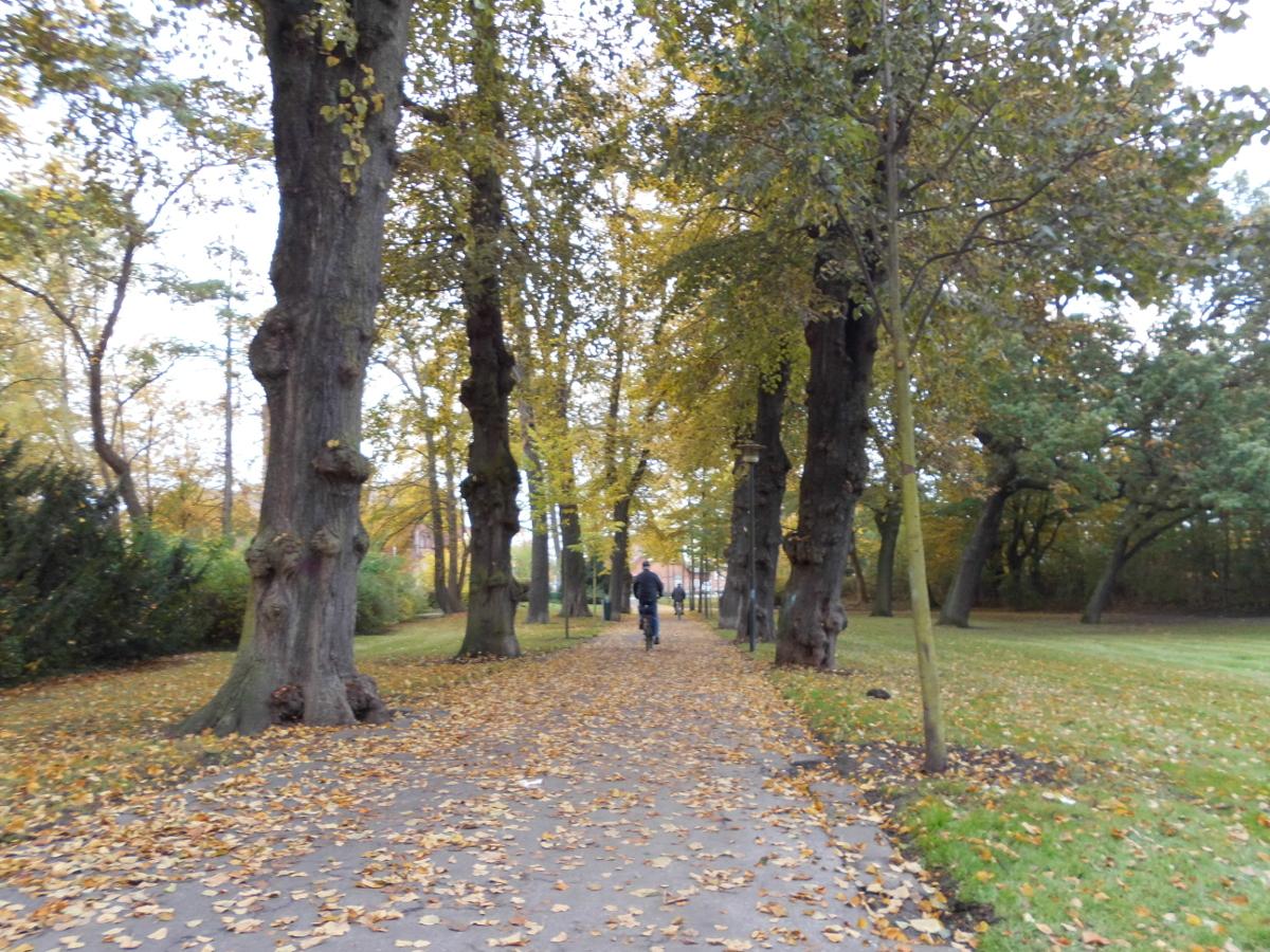 Kurze bunte Fahrradtouren an kurzen Herbsttagen